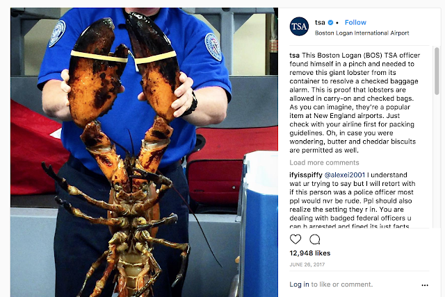TSA at Boston Logan identify a giant lobster in checked baggage. Lobsters are approved for flight.