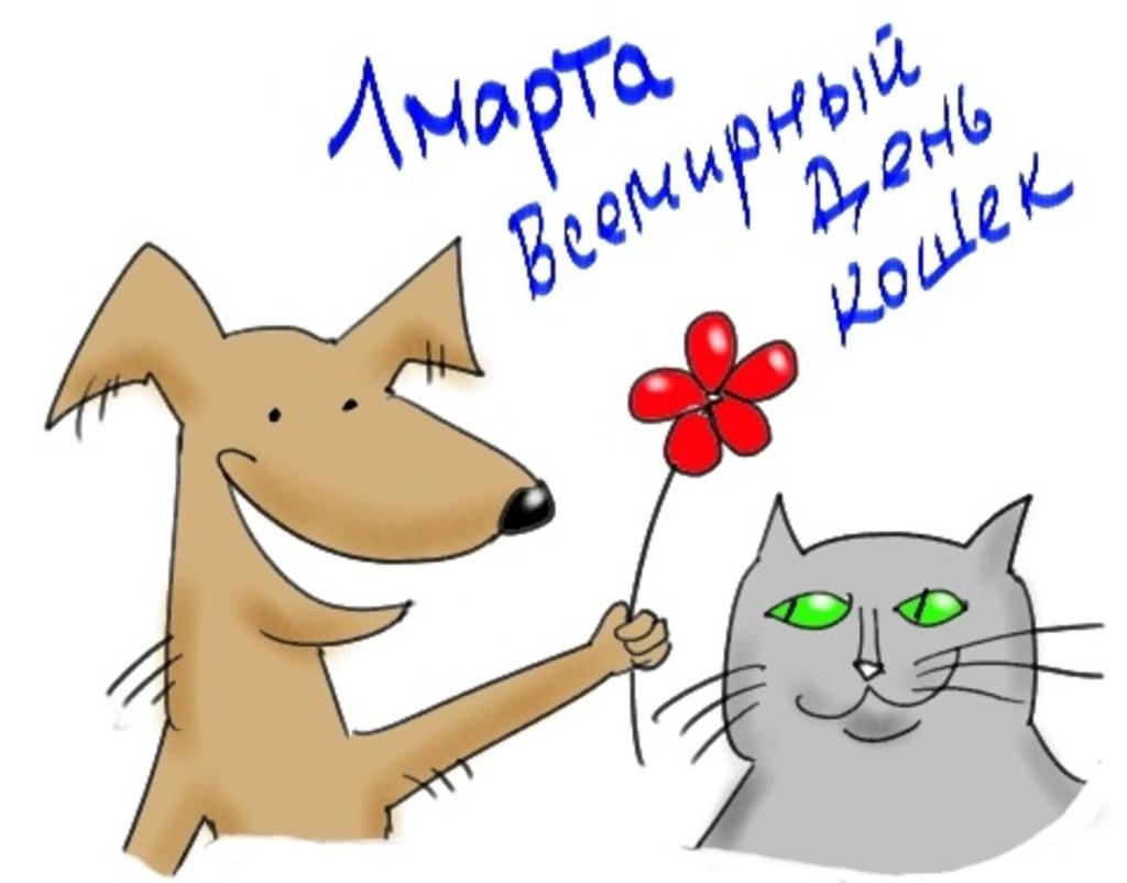 Всемирный день кошек смешные картинки, ручной