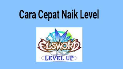 Cara Cepat Leveling Karakter di Elsword Online