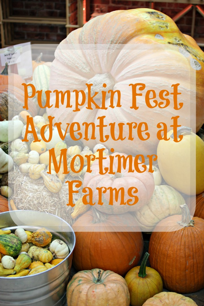 Review: Pumpkin Fest Adventure at Mortimer Farms