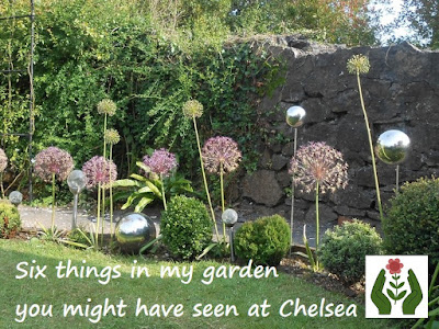 Six things from RHS Chelsea Flower Show Green Fingered Blog