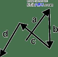 Cara Menjumlahkan Vektor dengan Metode Poligon