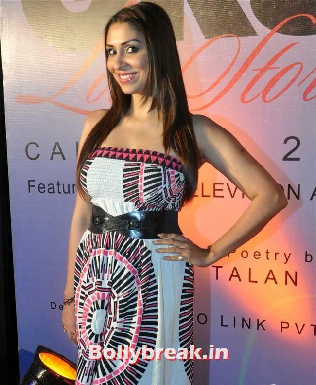 Pooja Misra, Hot Tv Babes at GR8 Calendar 2014 Launch