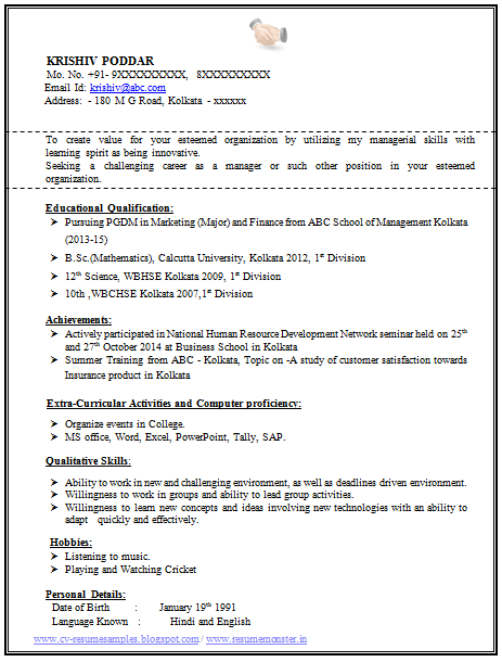 Resume Samples Format Doc sample resume 12 doc format samples – Resume Format Download