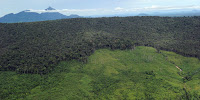 Receding forest on a mountainside in West Kalimantan province in Borneo. (Credit: AFP/Getty Images) Click to Enlarge.
