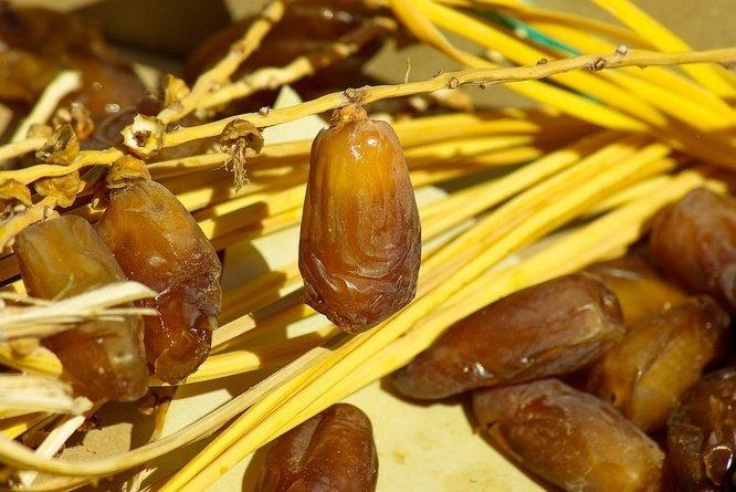 tetapi buah kurma sudah sangat dikenal oleh masyarakat Indonesia Tumbuhan Berkhasiat  10 Khasiat Kurma Muda: Untuk Kesuburan, Ibu Hamil, Ibu Menyusui, Mata, Kanker, dll
