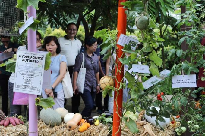 All 330 allotment garden plots were snapped up at the second Community Garden Festival in HortPark at the weekend.
