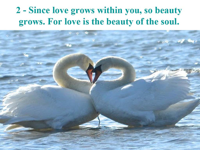 """""""Beauty"""" Quotes"""