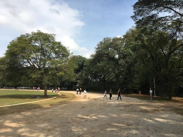 Virada Cultural nos parques de SP