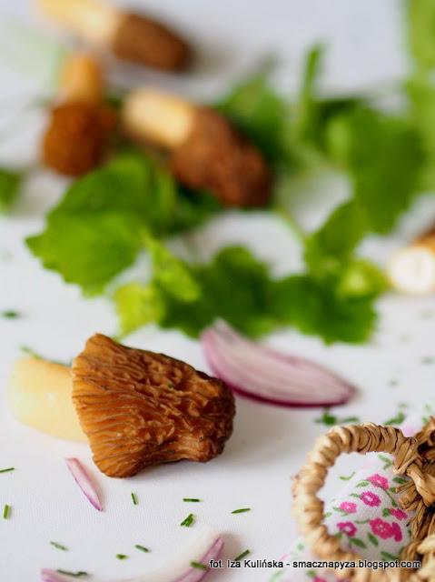 kremowa zupa ze smardzowkami, kremowa zupa, biala zupa, zupa jarzynowa z grzybami, grzyby, verpa bohemica, wiosenne danie, zupa zabielana, grzyby smazone, zielony olej ziolowy, grzybobranie, smardzowka, co na obiad