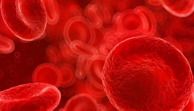 Enam Jenis Penyakit Berikut Diketahui Dapat Menyerang Darah