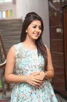 Nikki Galrani at Prema leela pelli gola trailer Launch ~  Exclusive 020.JPG