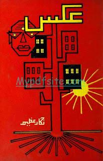 aks By nigar-azeem