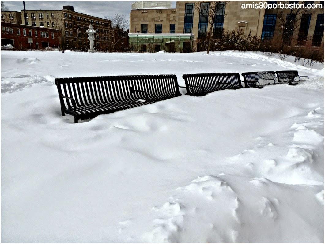 Juno: La primera Snow Emergency del 2015 en la Biblioteca Pública de Cambridge