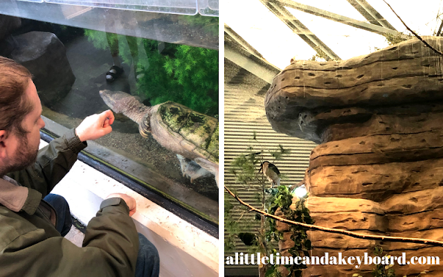 Visiting with wildlife at Great Lakes Aquarium in Duluth, Minnesota