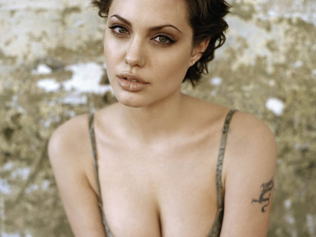 Angelina Jolie Sexy Images 21