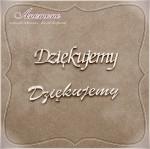 http://www.scrapek.pl/pl/searchquery/dzi%C4%99kujemy/1/full/5?url=dzi%C4%99kujemy