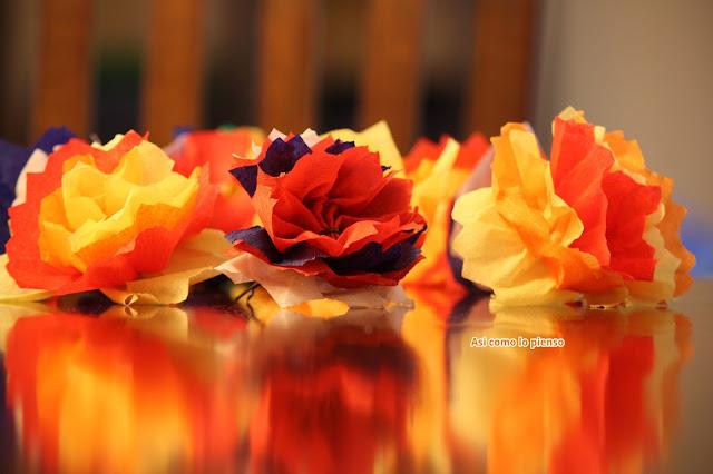 flores pinocho