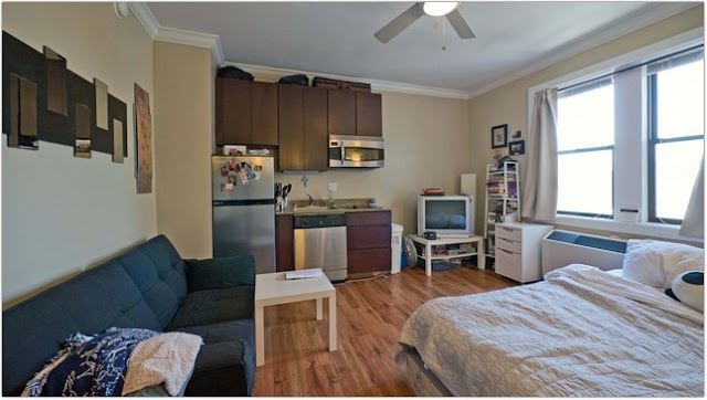 1 Bedroom Apartments Chicago Property Image6 Furnished 1bedroom Apartment At W Randolph St