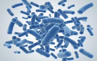 Discuva Use Ground-Breaking Technologies To Develop New Classes Of Antibiotics