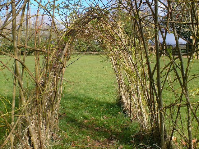 living willow Igloo sculpture kits for schools parks and gardens