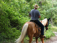 Horseback riding in Gatlinburg