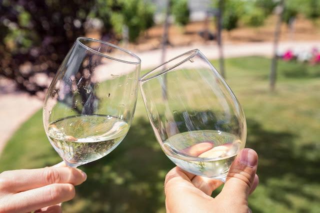 Cata de vino blanco en Bodega Pagos del rey