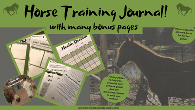 Horse Training Journal with essential oil and herbs for horses guide! Plus DIY natural horse care recipes! #naturalhorsecare #farmhorses