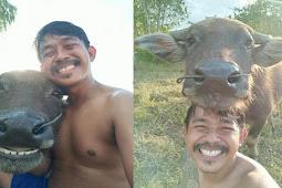Karena Foto Selfie Dengan Kerbau Pria Dari Thailand Jadi Terkenal!