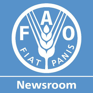 Lowongan Kerja NGO Terbaru, FAO Indonesia National Logistic Assistant
