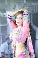 Actress Angela Krislinzki in Pink Saree Blouse Exclusive Pics March 2017 ~  066.JPG
