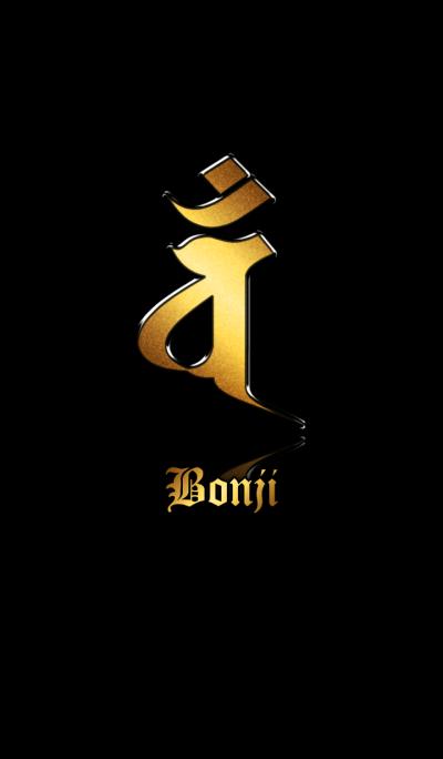 Zodiac Sanskrit [Van] Gold.Black.