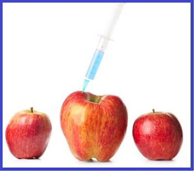 الآثار السلبية للأغذية المعدلة وراثيا