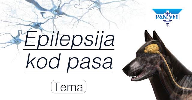 Epilepsija i epileptični napadi kod psa