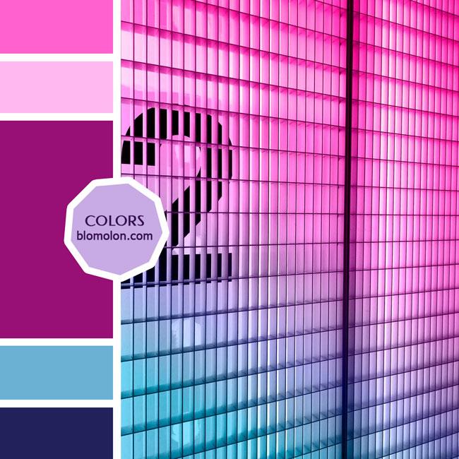 variedad_en_color_moodboard_84