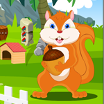 Games4King Starving Squirrel Rescue Walkthrough