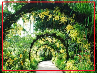 Singapore Botanic Garden Singapura