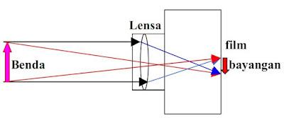Alat Optik Kamera, Lup (Kaca Pembesar) dan Mikroskop beserta Jenis-jenis Mikroskop
