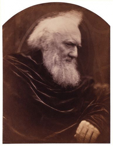 Portrait of Henry Thoby Prinsep, member of the Prinsep family, descendants of John Prinsep, merchant in India and later Member of Parliament. Albumen print with arched top. 1866. In Photos: Remembering Celebrity Photographer Julia Margaret Cameron, history of photography, vintage photos, photography news, photography