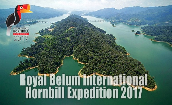 Hornbill Expedition Royal Belum 2017