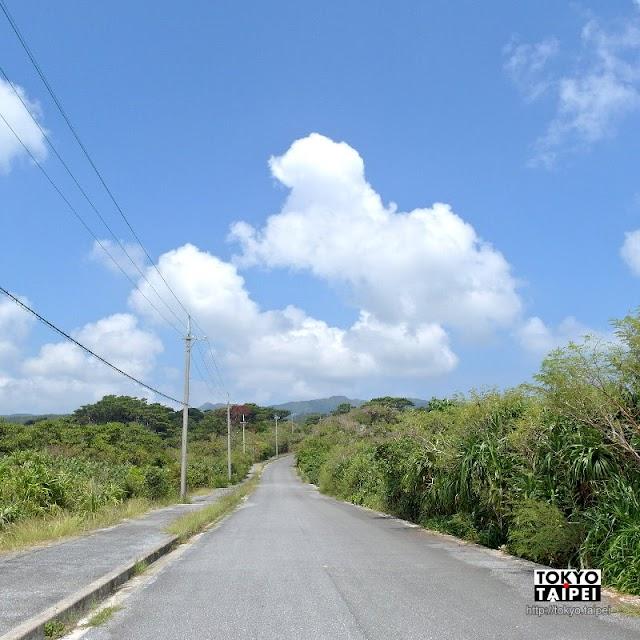 【西表島】沖繩第二大島 搭日本最南端公車看雨林與山貓