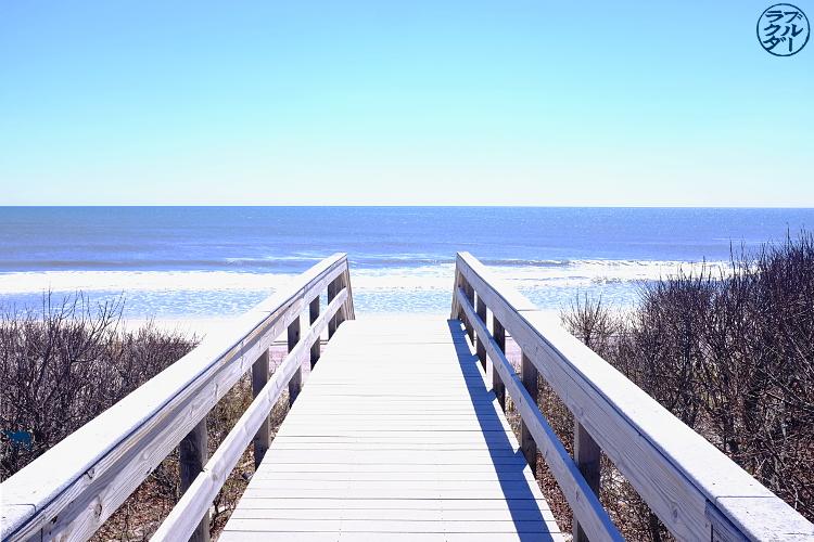 Le Chameau Bleu - Séjour à Long Island New York - Plage de Davis Park