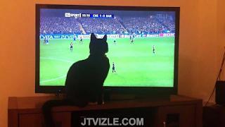 Futbolun Keyfini Lig TV Jet İle Çikarin