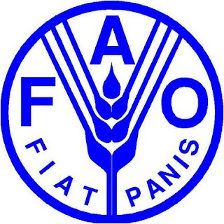 ICT helps to monitor crop growth – FAO