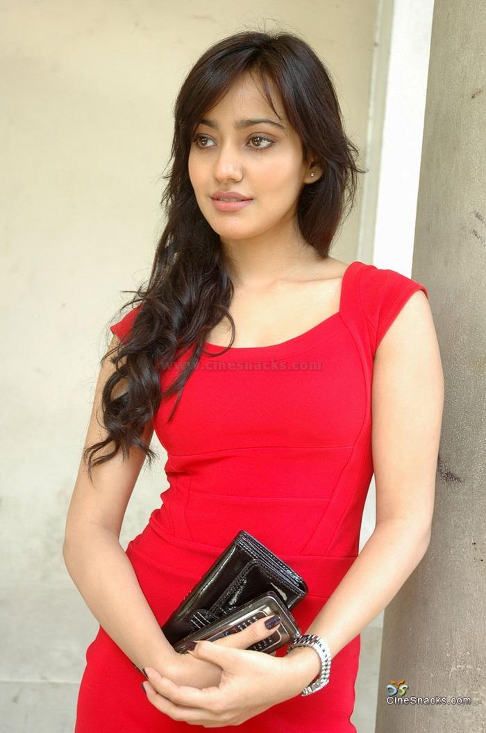 Neha Sharma, Hot And Sexy Bollywood Actress  Star World-9469