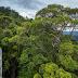 6 Tempat Liburan Asik di Brunei Darussalam