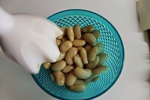Crostini con crema di fagioli coppa e sedano