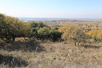 Wzgórza Golan, Голанские высоты, 戈蘭高地
