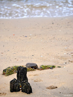 sand posts