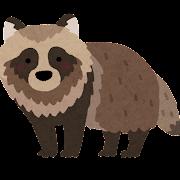 狸のイラスト